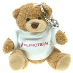 Bear - 10cm on Keyring with T shirt